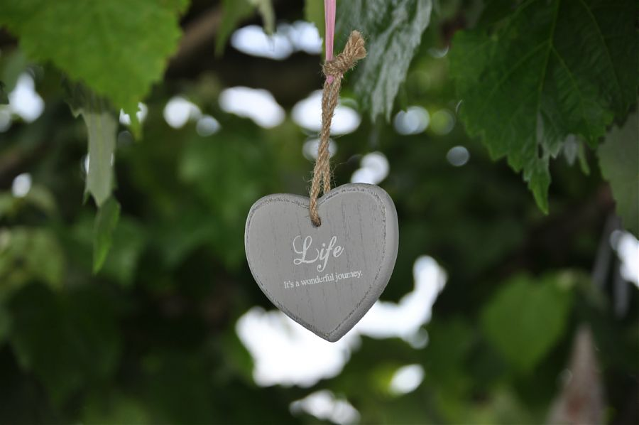 heart shaped decoration hanging from tree