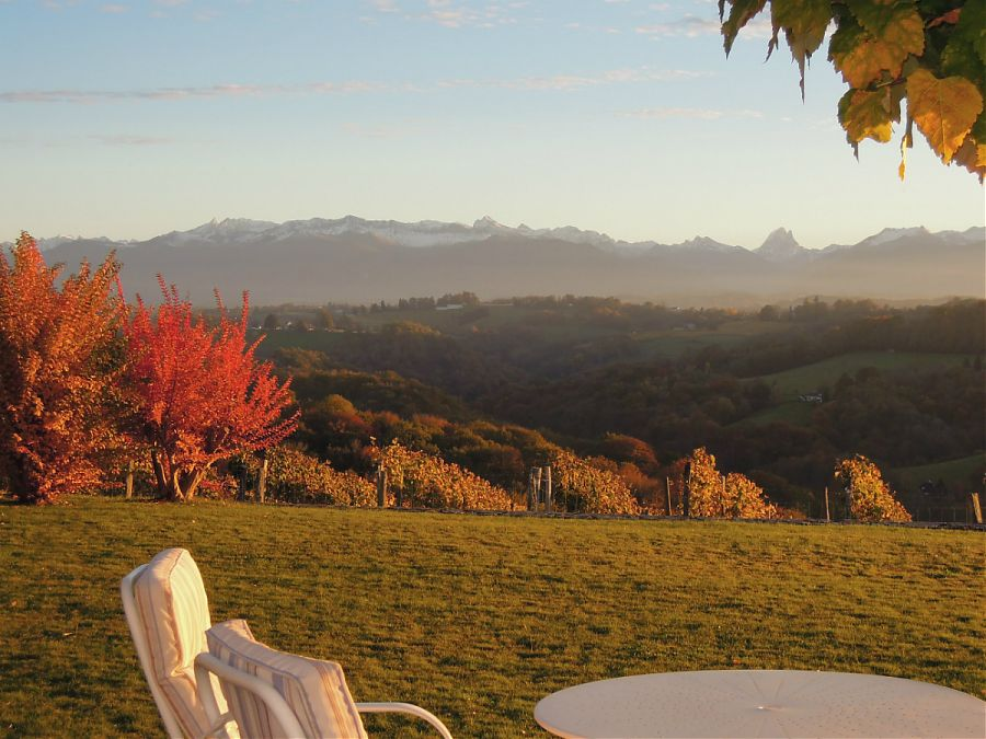 Autumn leaves and views of the mountains from the garden of Clos Mirabel