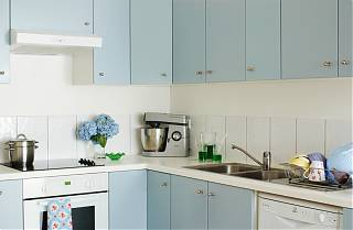 Kitchen with blue door units, oven and dishwasher