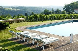 piscine et transats - vue sur les vignes
