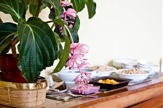 Petit déjeuner -buffet avec fruits et céréales dans le chambre d'hôte Clos Mirabel
