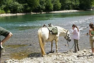 Randonnée avec un pottock -fille avec un cheval au bord de la rivière