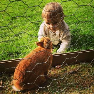 enfant avec lapin